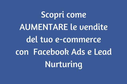 vendite di un e-commerce
