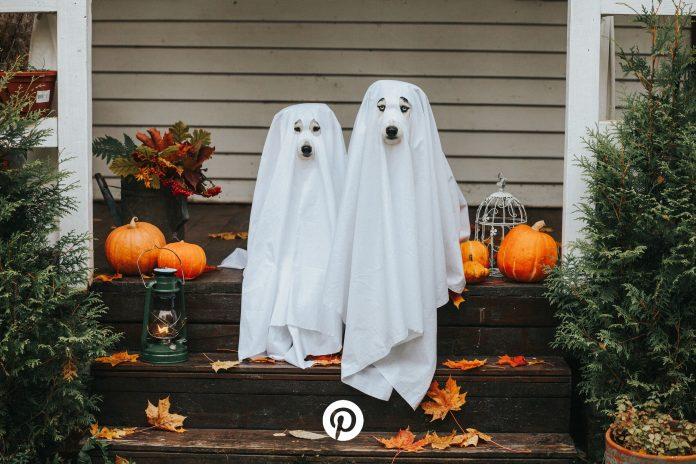 pinterest halloween foto